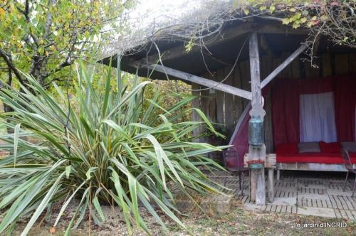 La Romieu,Coursiana,chez Renée,Ginkgo biloba 245.JPG