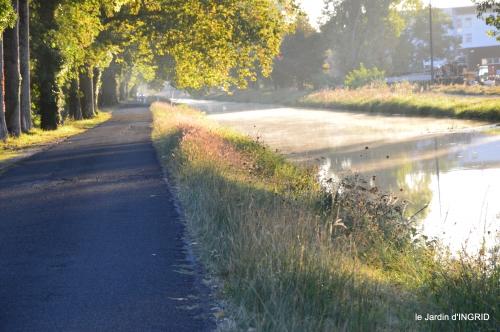 canal,au fond de l'Or,Julie,feuilles 002.JPG