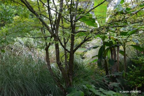 canal,au fond de l'Or,Julie,feuilles 133.JPG