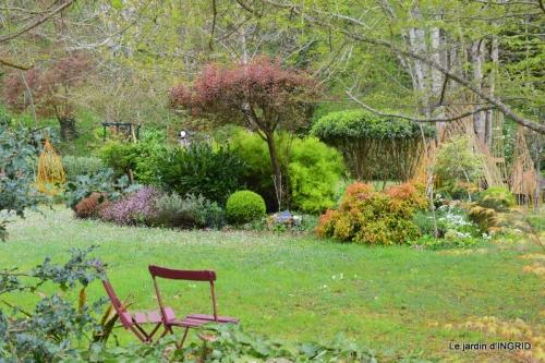 jardin confiné ,osier,magnolia jaune 046.JPG