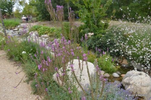 orage,puces,bouquet,Anniv.Ines,Brantome,Jardins d'eau 265.JPG