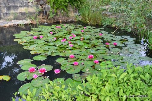 les jardins d'eau de Carsac 062.JPG