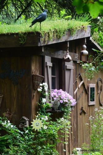 jardin pluie,Inès,Bébés cygnes,bouquet,canal 051.JPG