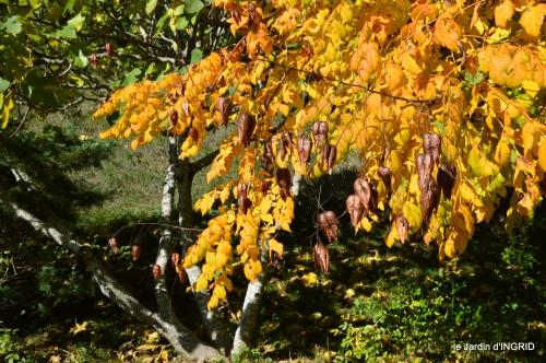 jardin automne,voisinage,canal 130.JPG