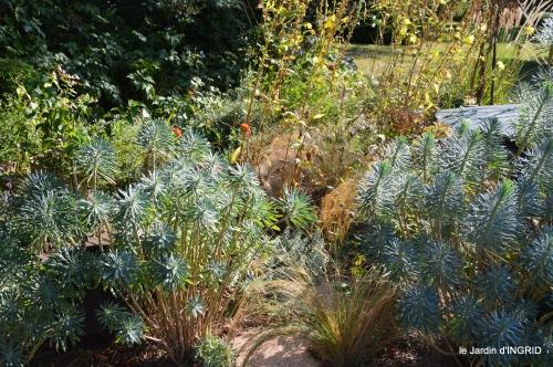 jardin en septembre,les cygnes 166.JPG