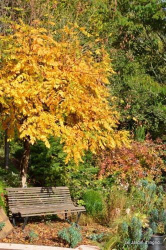 jardin serre bucher automne 044.JPG