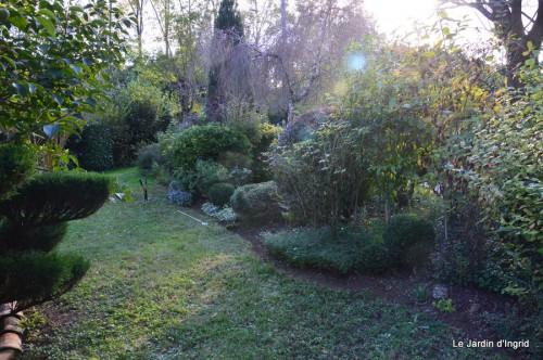 jardin octobre 063.JPG