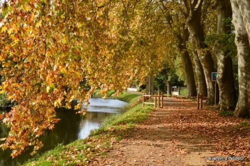 canal automne ,jardin,Ines 102.JPG