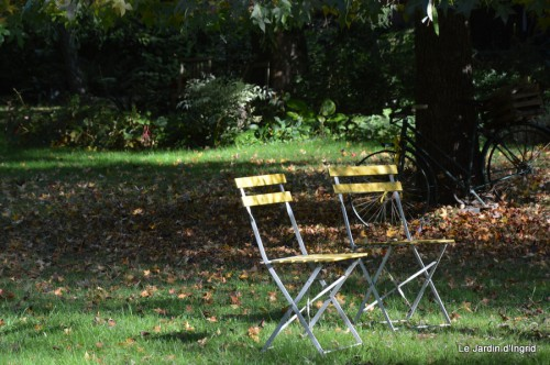 sauges,plectanthrus,Romane,canal,manthe r.,automne 127.JPG