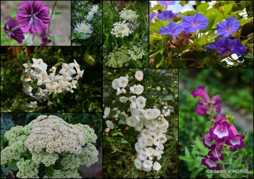 2014-10-27 jardin,citrouille Issigeac,moulin Violette,Besse,Arya.jpg