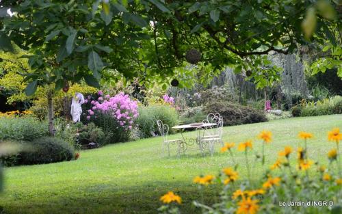 tournesols,pt jardin,nénuphard,libellules,lavande bouquet,carava 082.JPG