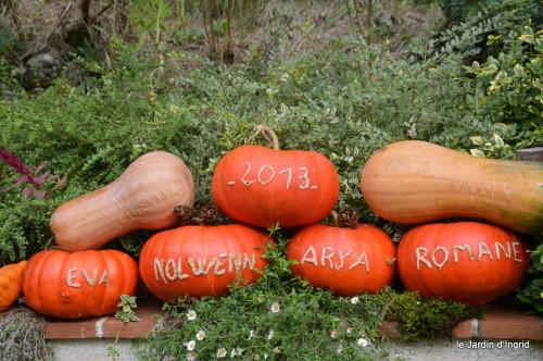 jardin octobre,chez Marylaur,Arnaud ,Ariane,la mer,sauges 023.JPG