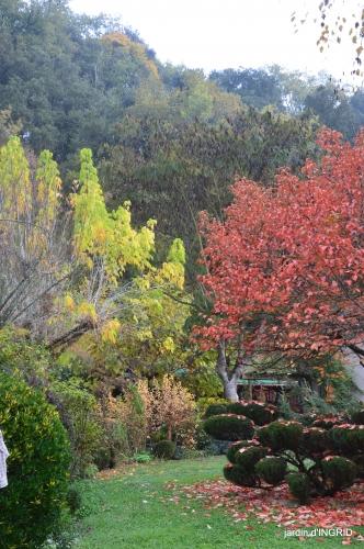 couleurs d'automne,bouquet,lune 024.JPG