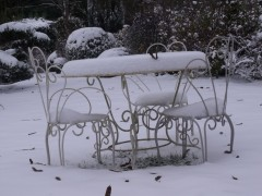 janvier fevrier 2012 038.JPG