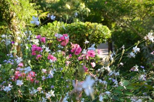fleurs petit jardin,bouquets,grand jardin 049.JPG