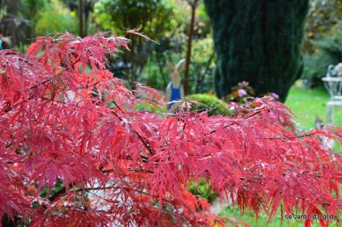travaux,érable rouge,abeilles,Monpazier,jardin 114.JPG