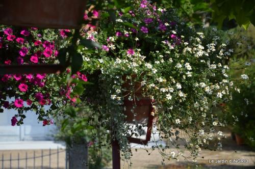 jardin,les filles,gerbera,Lalinde 131.JPG