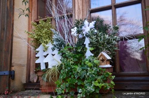 Noel extérieur,fin d'automne,oiseaux 061.JPG