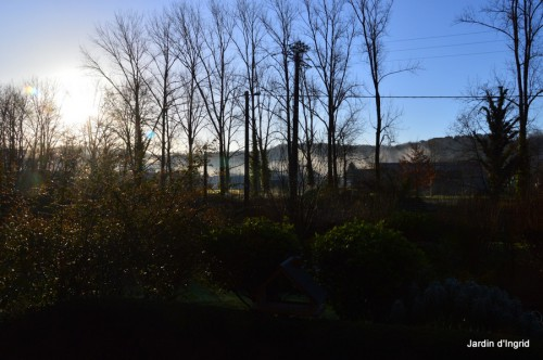 enveloppes SOL2014,jardin,Nikk,lever de soleily 003.JPG