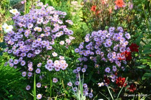 male ancienne,septembre jardin,couronne,bouquet 055.JPG