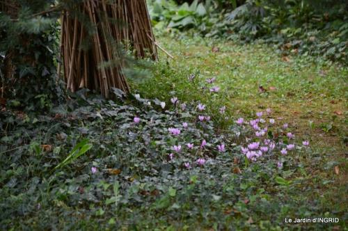 jardin ,bouquet 052.JPG